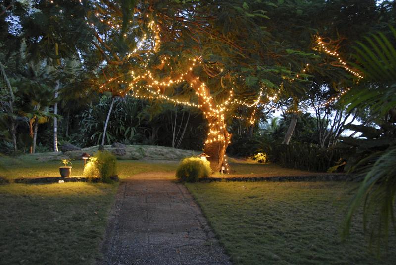 caribbean-wedding-decor-02