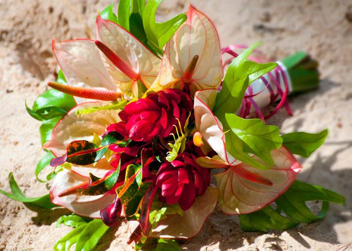 Caribbean Flowers: Barbados Wedding Flowers Services