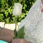 Barbados Wedding Rose Ceremony